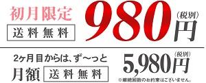 サブスクB980円